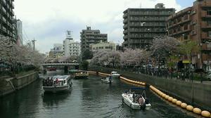 Oookagawasakuramatsuri20140406_2